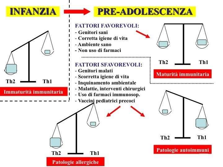 bilancia_th1_th2